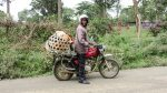 Live chickens in a net on back of motorcycle on way to market in Arusha